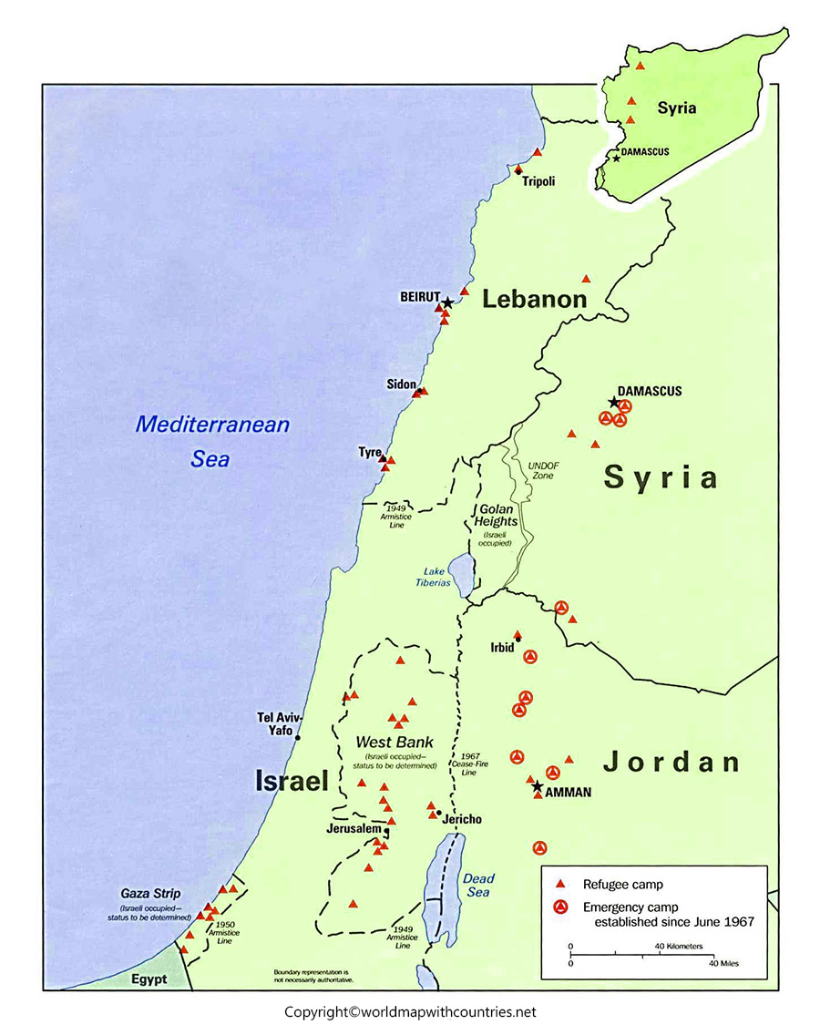 Palestine State Map with States